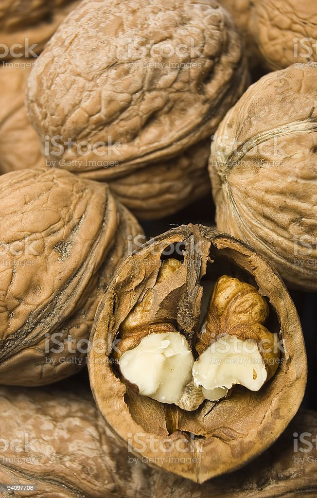 nut macro royalty-free stock photo