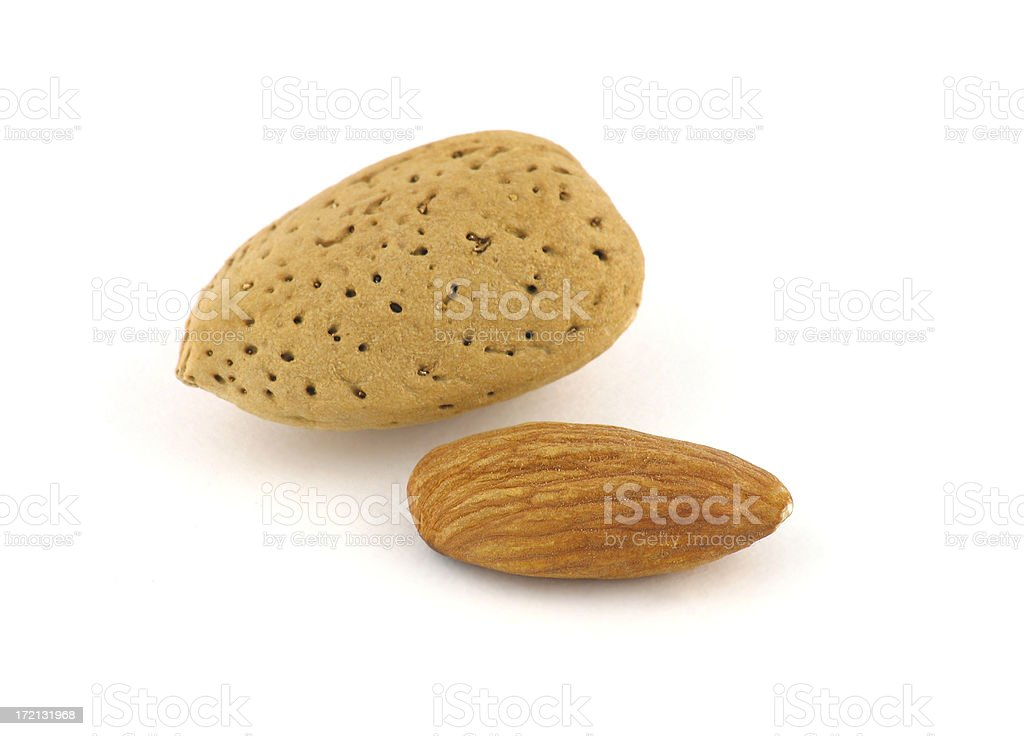 Nut Series: Almond royalty-free stock photo