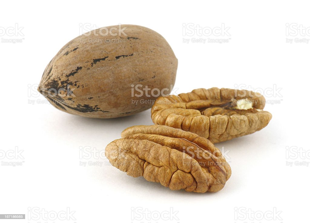 Nut Series: Pecan stock photo
