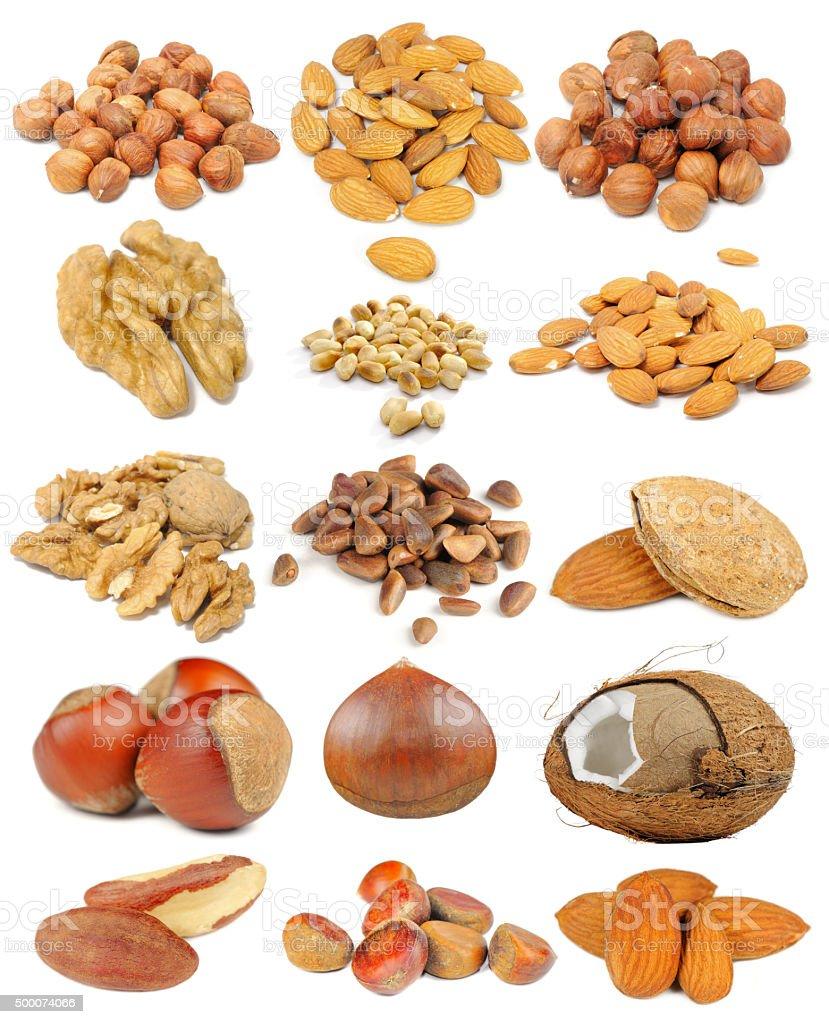 Nut Set Isolated on White Background stock photo