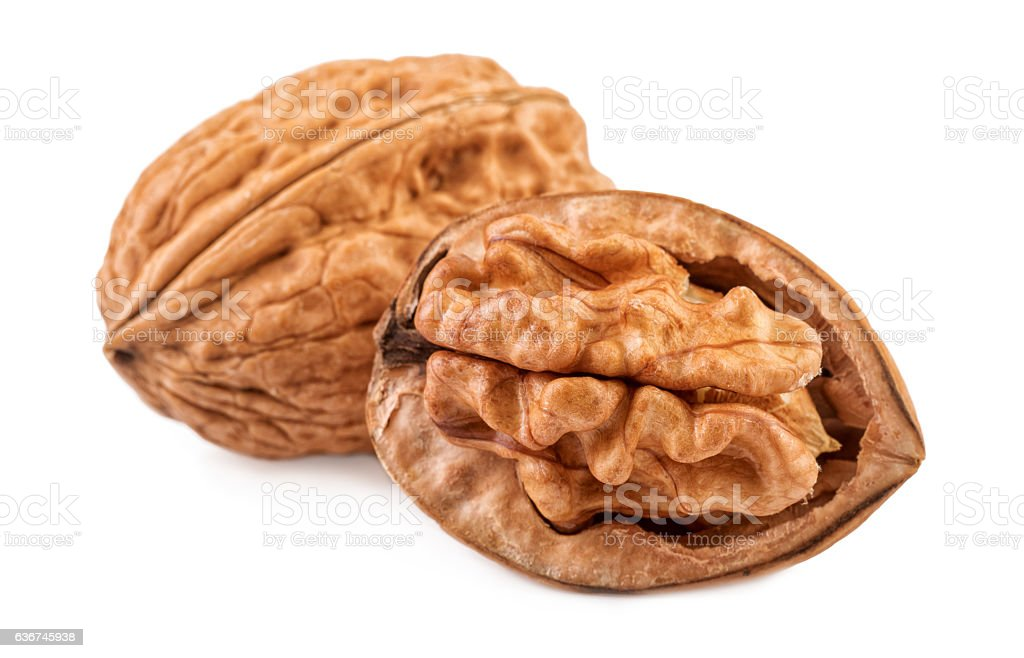 Nut Walnuts whole and half in closeup stock photo