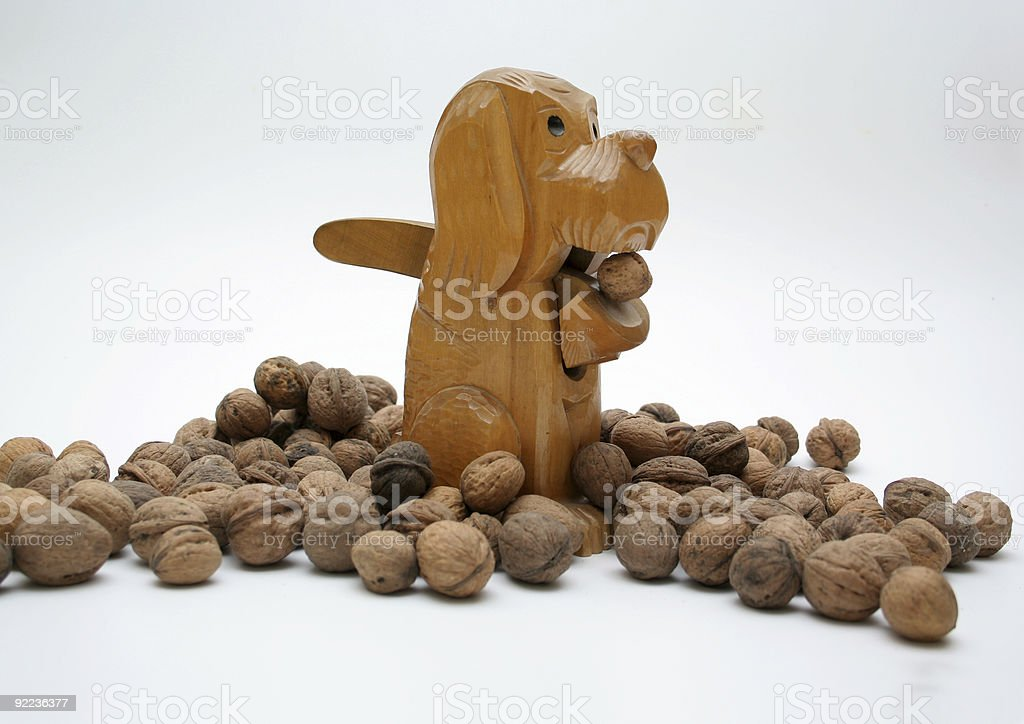 nutcracker dog with walnuts royalty-free stock photo