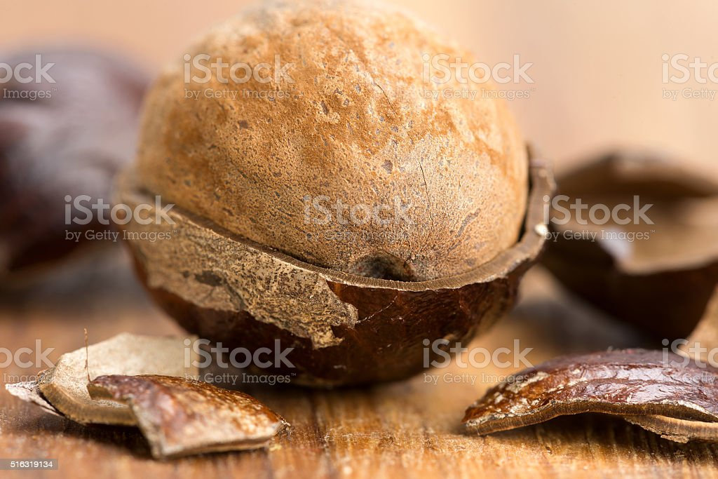 nutmeg in a fragmented nutshell stock photo