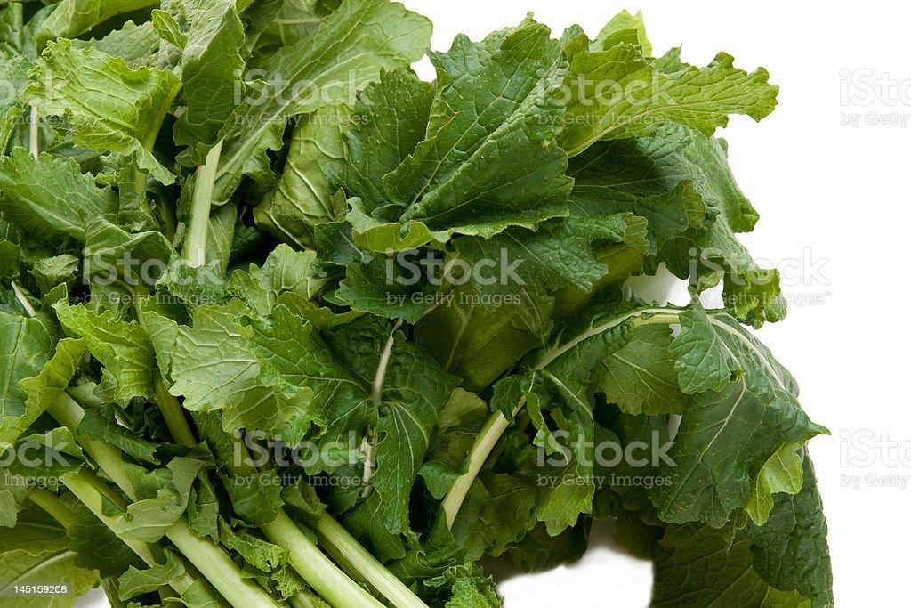 Nutritious Turnip Greens royalty-free stock photo