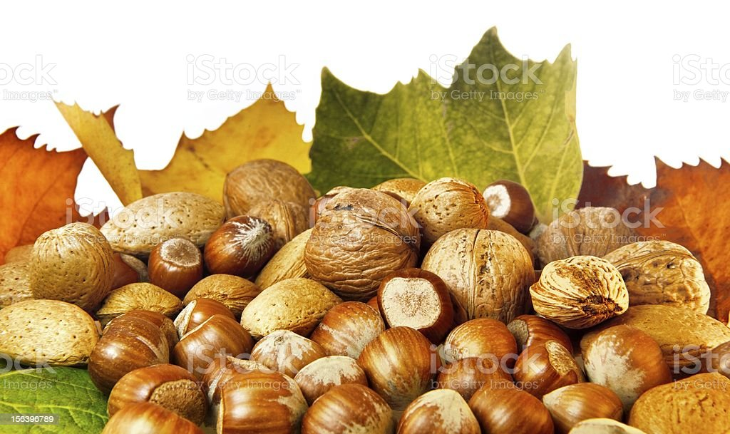 Nuts and autumn leaves royalty-free stock photo