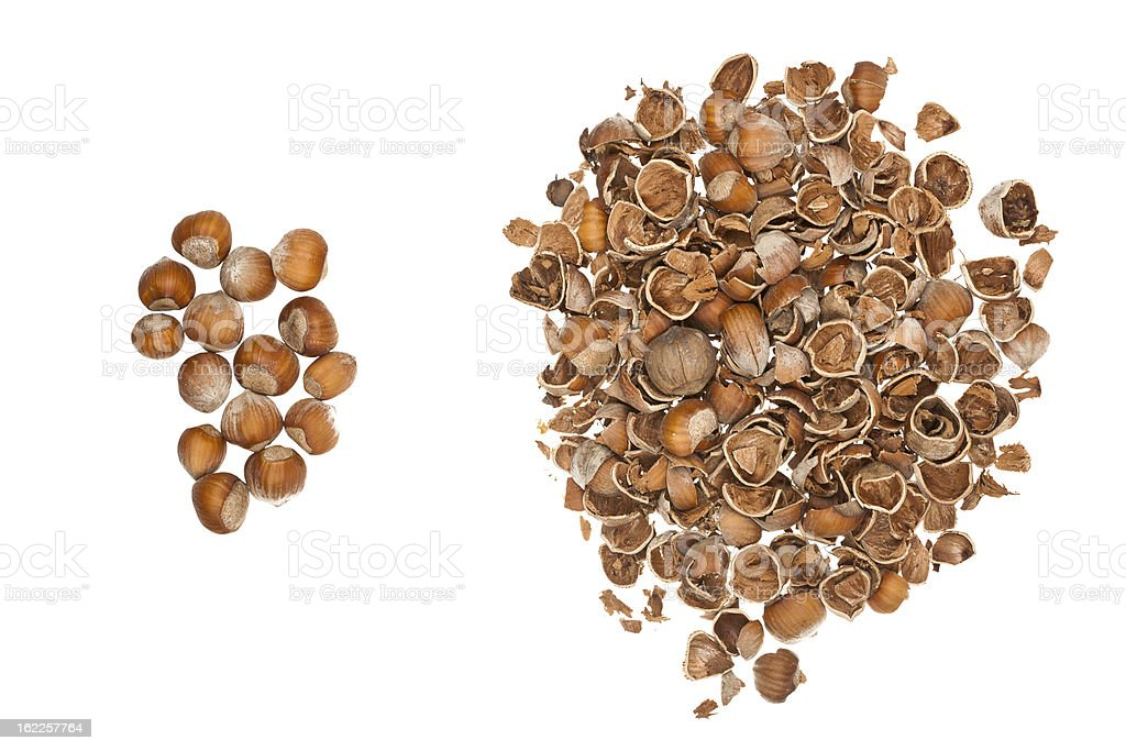 Nuts and empty nutshells royalty-free stock photo