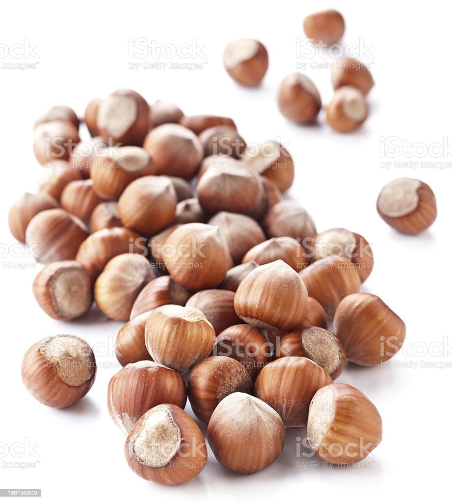 Nuts filberts isolated royalty-free stock photo