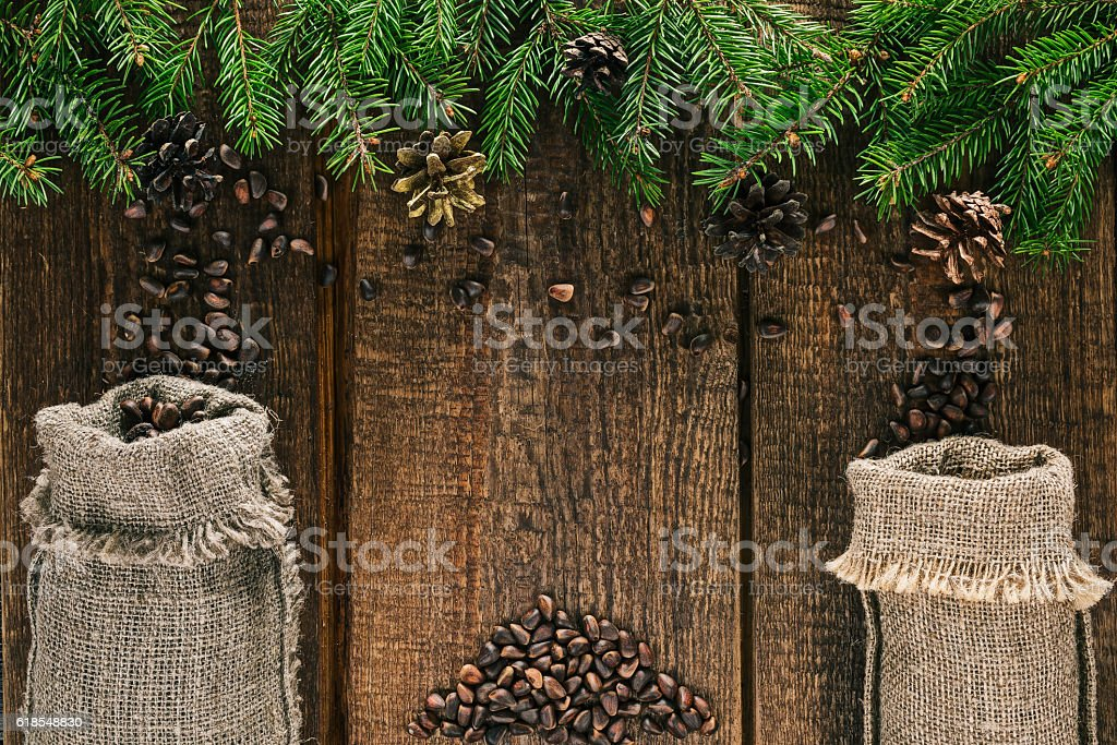 Nuts gathering in giant world stock photo