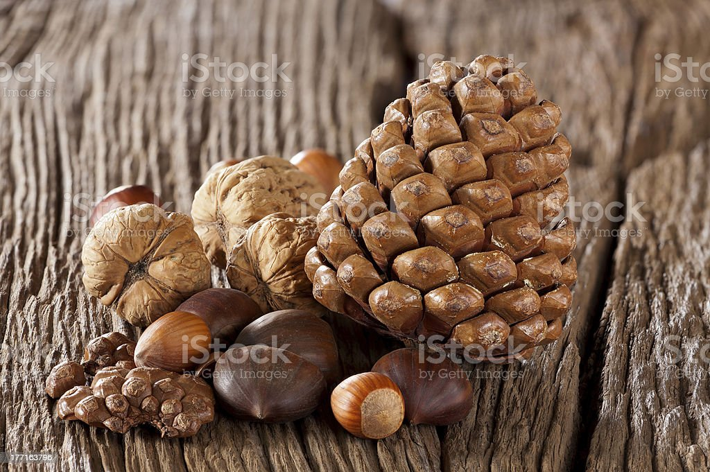 Nuts, sweet chestnuts and pine cones royalty-free stock photo