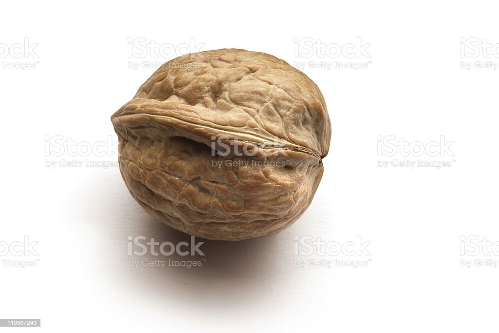 Nuts: Walnut Isolated on White Background royalty-free stock photo