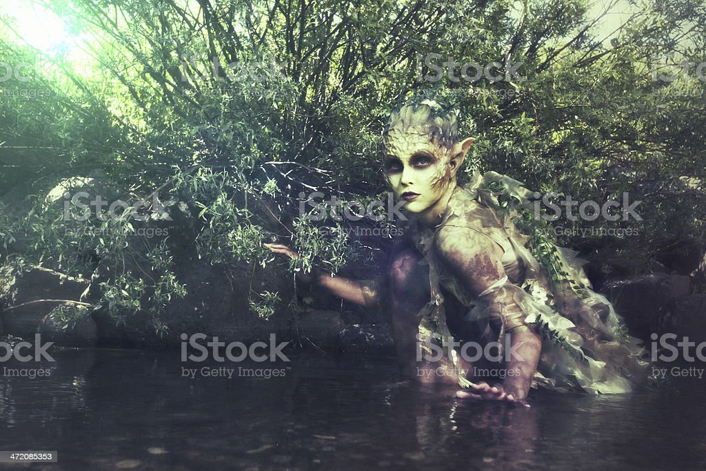Nymph in the river stock photo