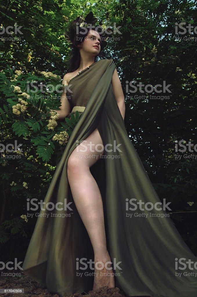 Ninfa na thickets de Montanha de Cinzas foto de stock royalty-free