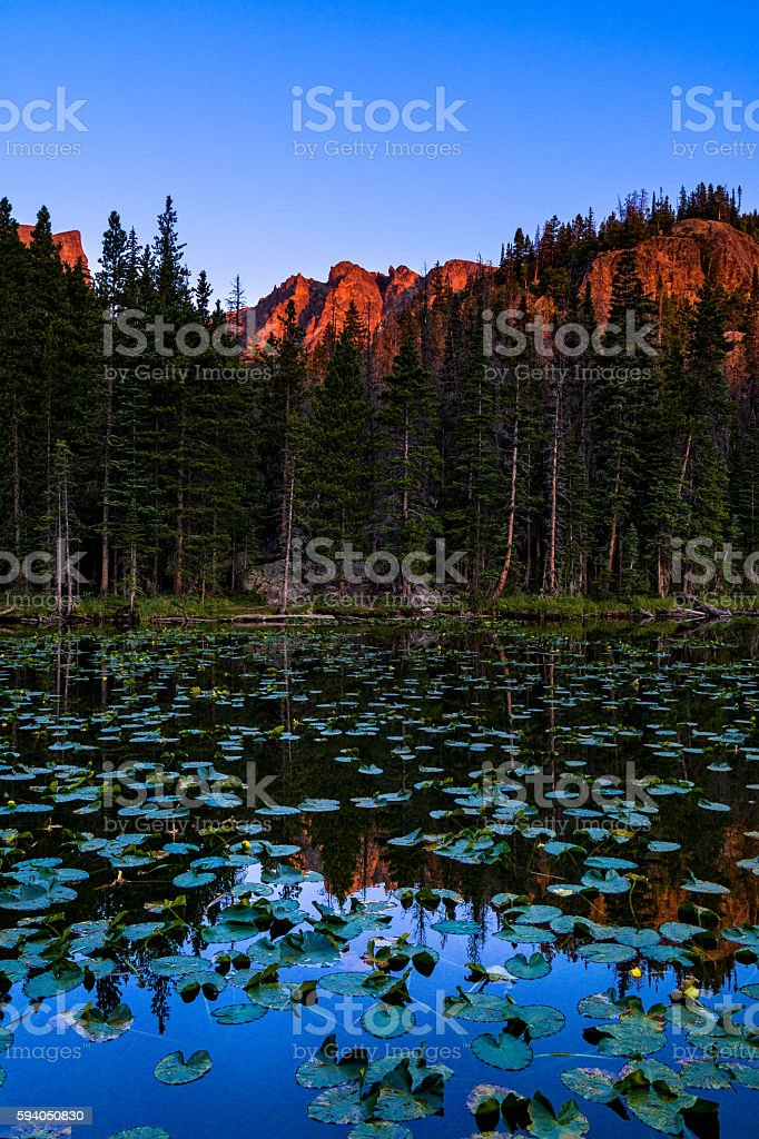 Nymph Lake Reflections of Hallett Peak stock photo