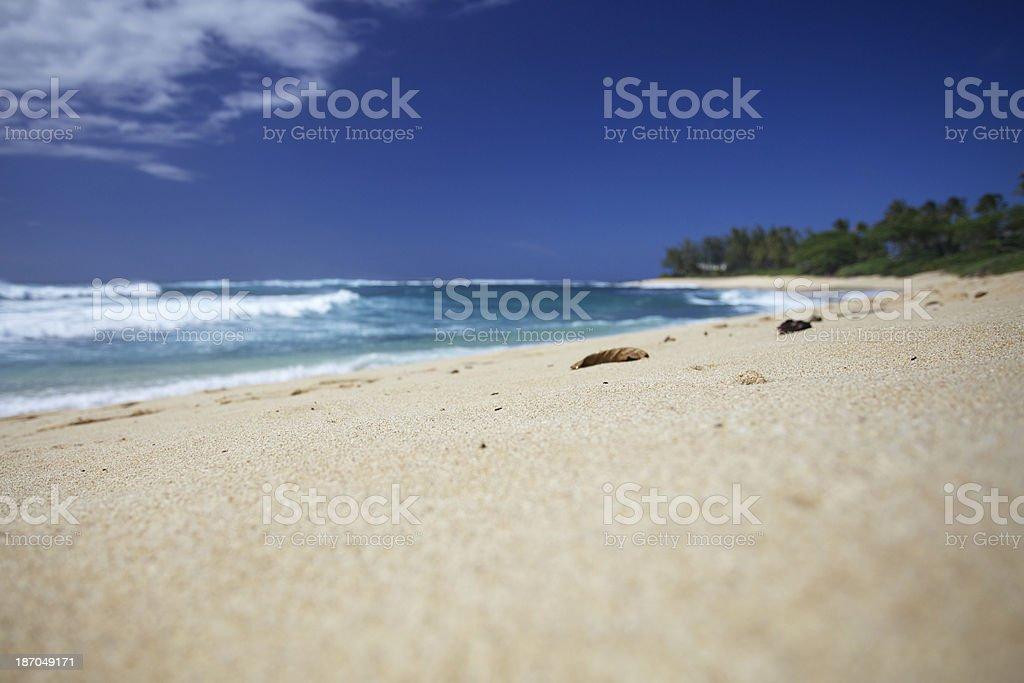 Oahu North Shore Beach royalty-free stock photo