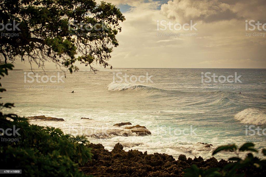 Oahu North Shore, Hawaii, USA royalty-free stock photo