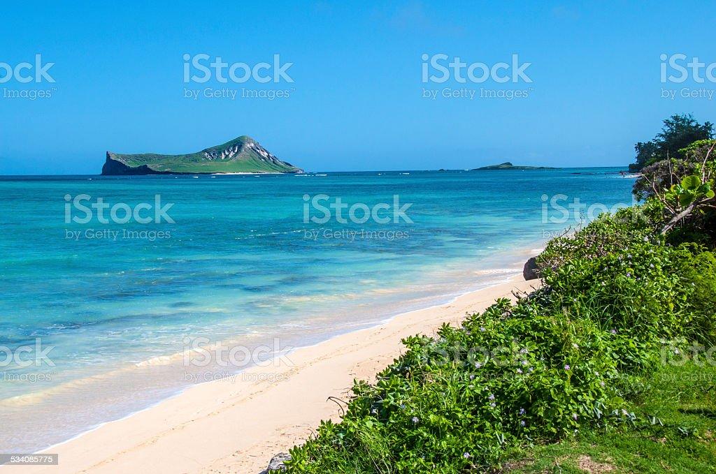 Oahu Northeast stock photo