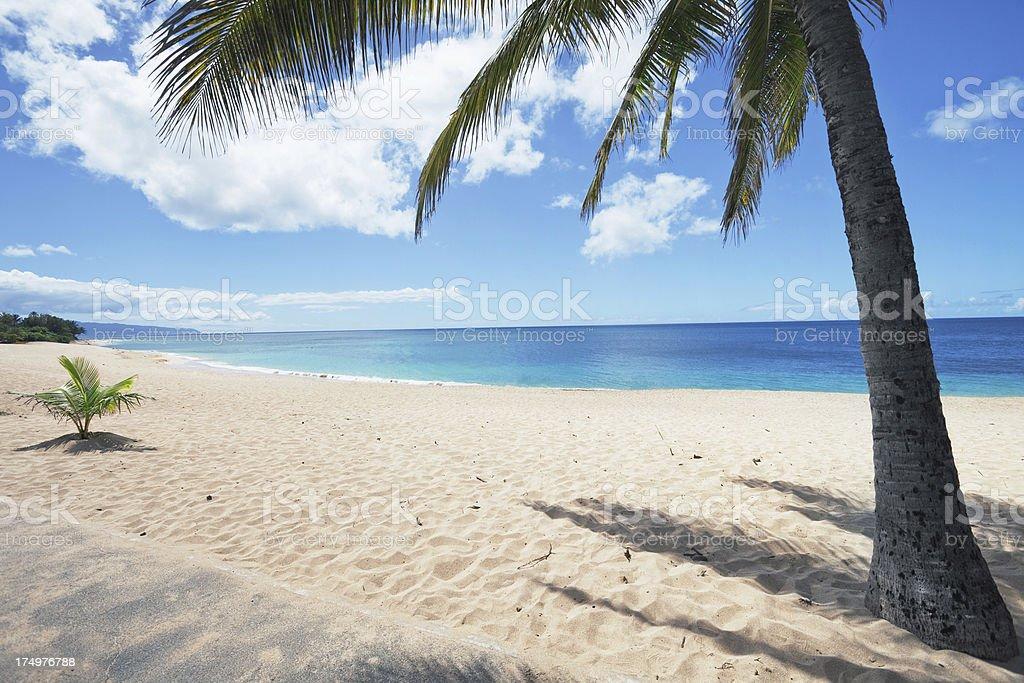 Oahu's North Shore royalty-free stock photo