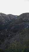 Oak Creek Canyon at Sunset Vertical 2