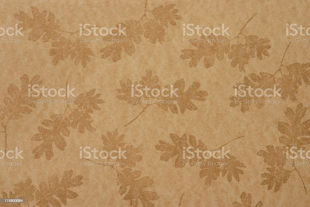 Oak Leaves on Paper royalty-free stock photo