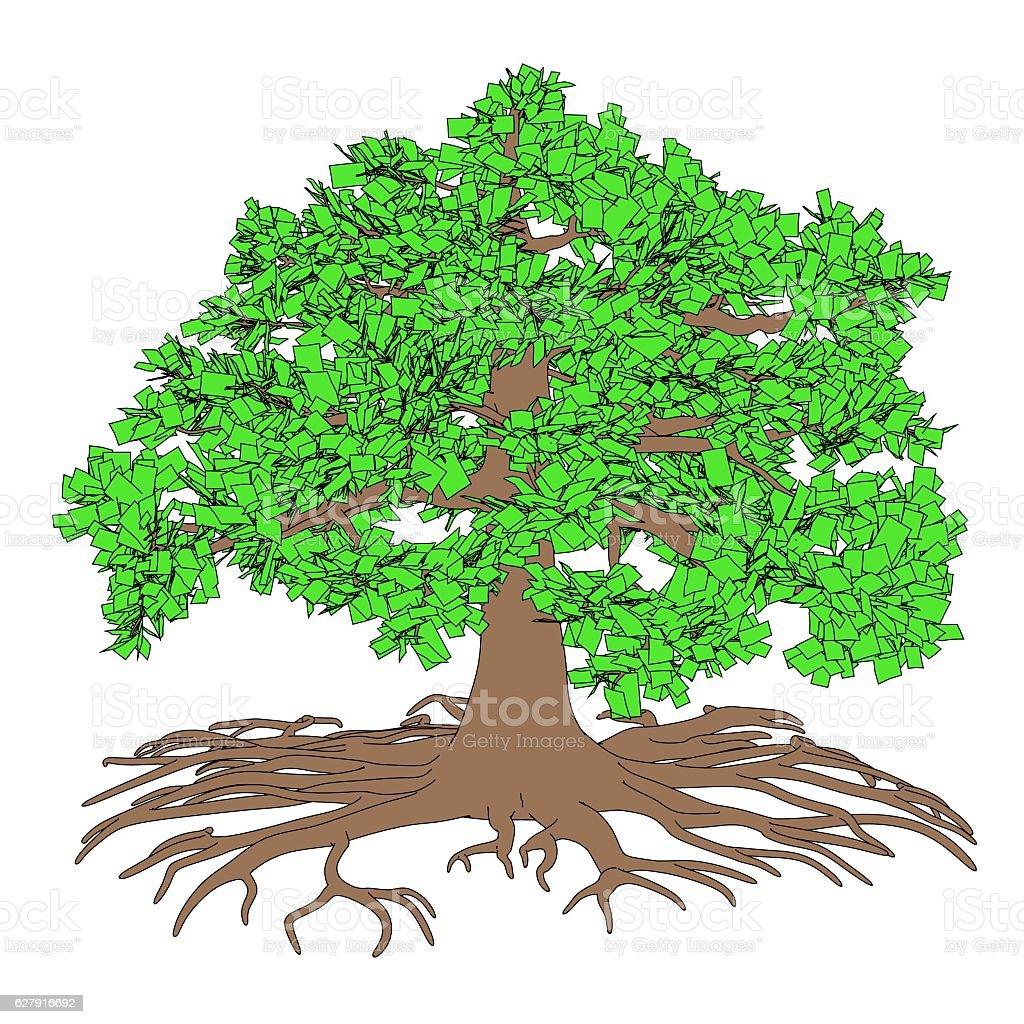 oak stock photo