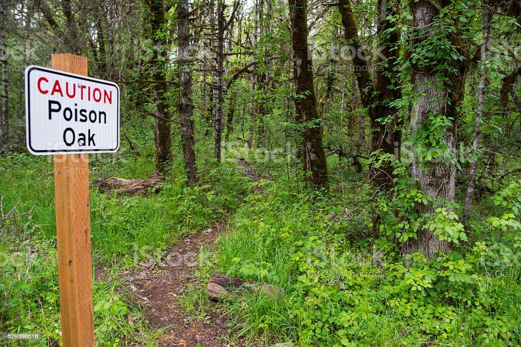 Oak Poison Warning Sign stock photo