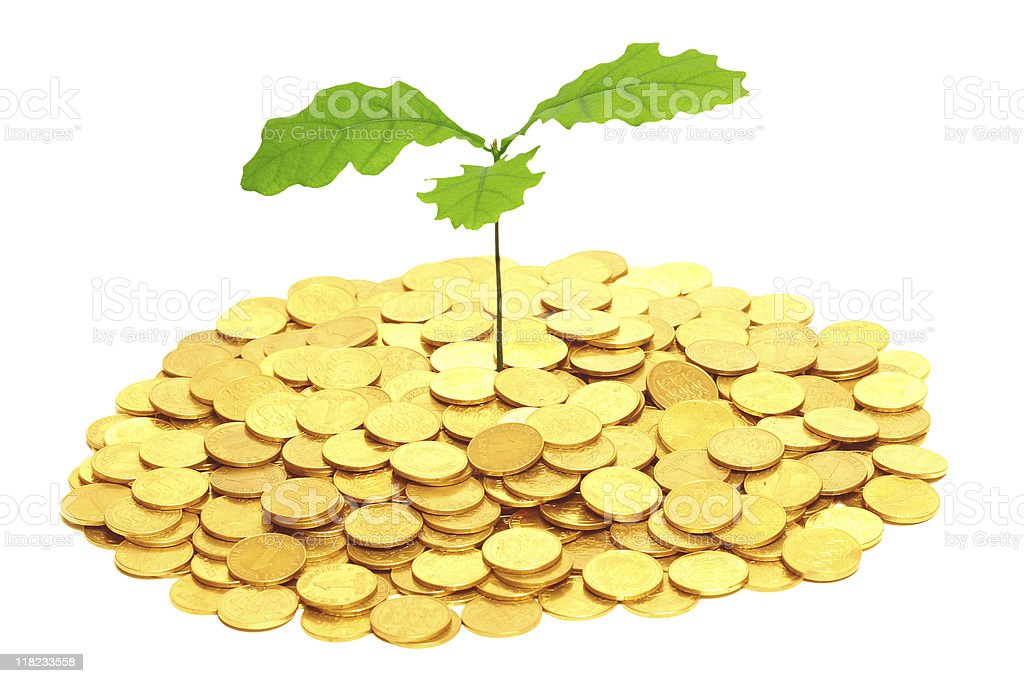 Oak sprout grown from money. royalty-free stock photo