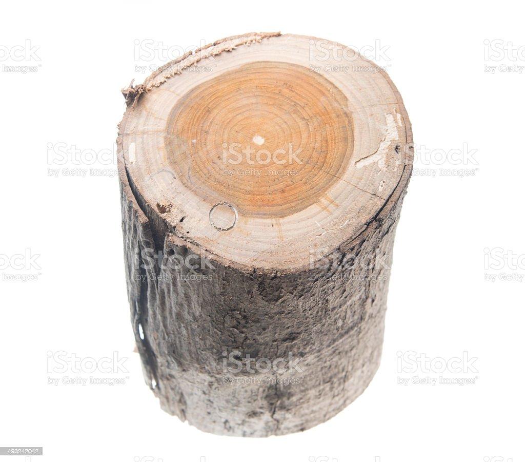 oak stump, log fire wood isolated on white background stock photo