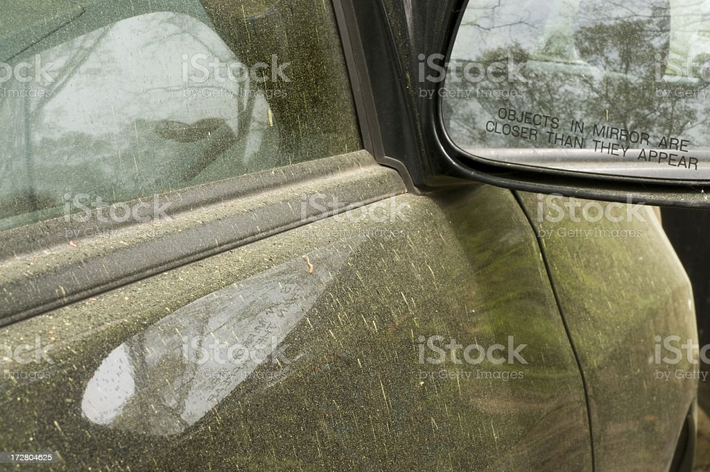 Oak Trees and Pollen on Car royalty-free stock photo