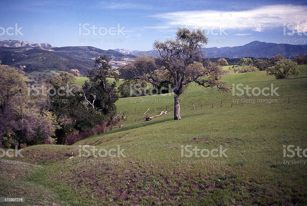Oak Woodlands and grasslands Foothills Sierra Nevada Central California stock photo