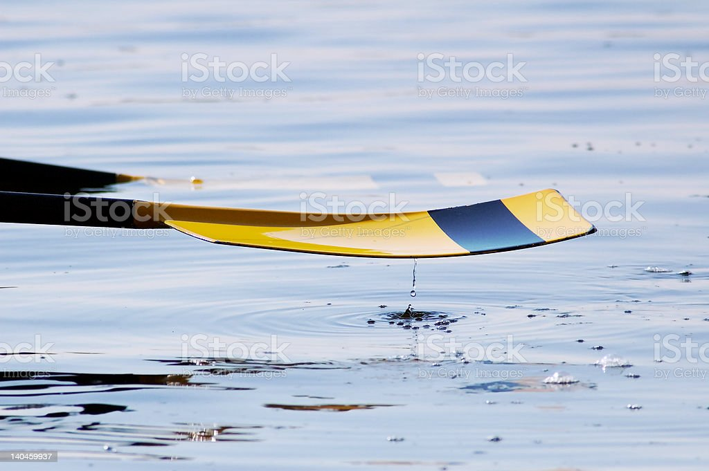 Oar with Water Droplet royalty-free stock photo