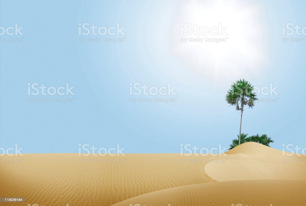 Oasis in Desert stock photo