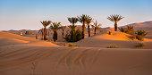 Oasis in Merzouga, Morocco