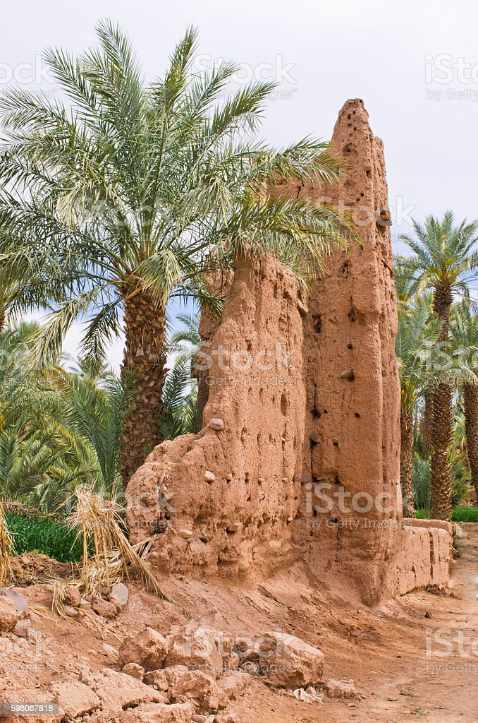 Oasis in Morocco stock photo