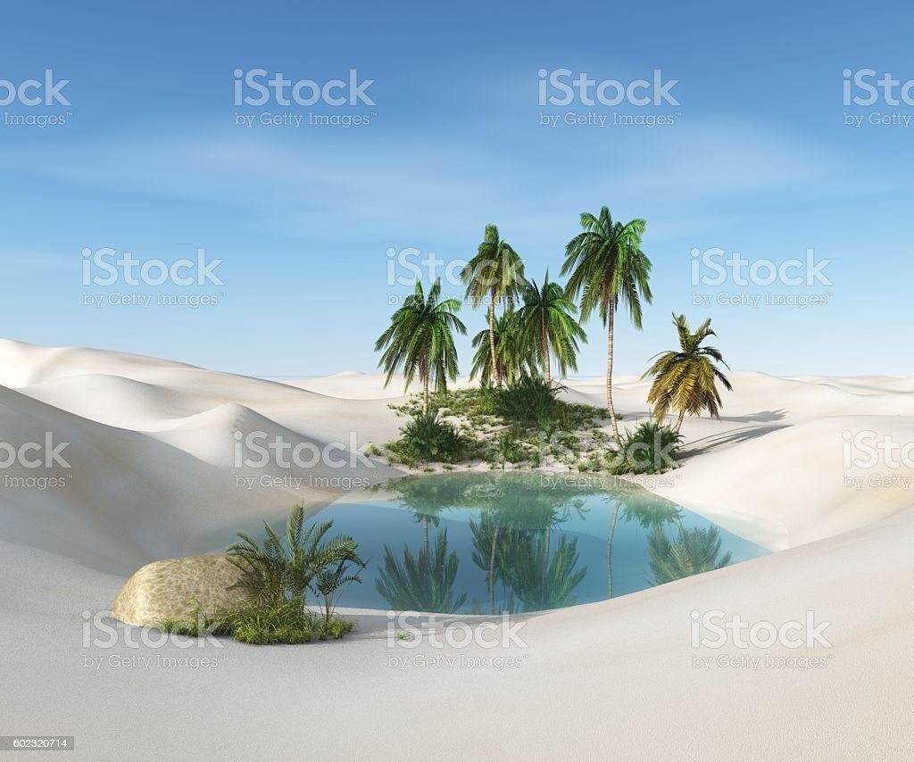 oasis in the desert stock photo