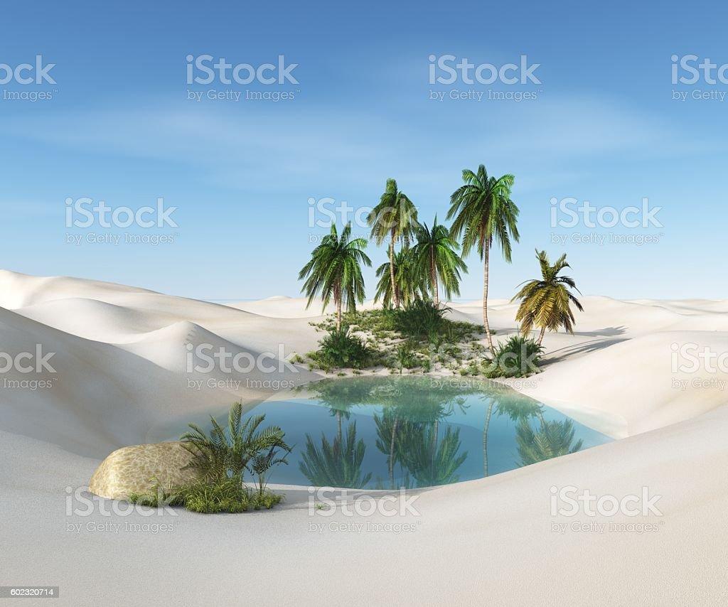oasis in the desert stock photo