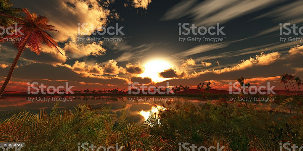 oasis landscape sunset stock photo