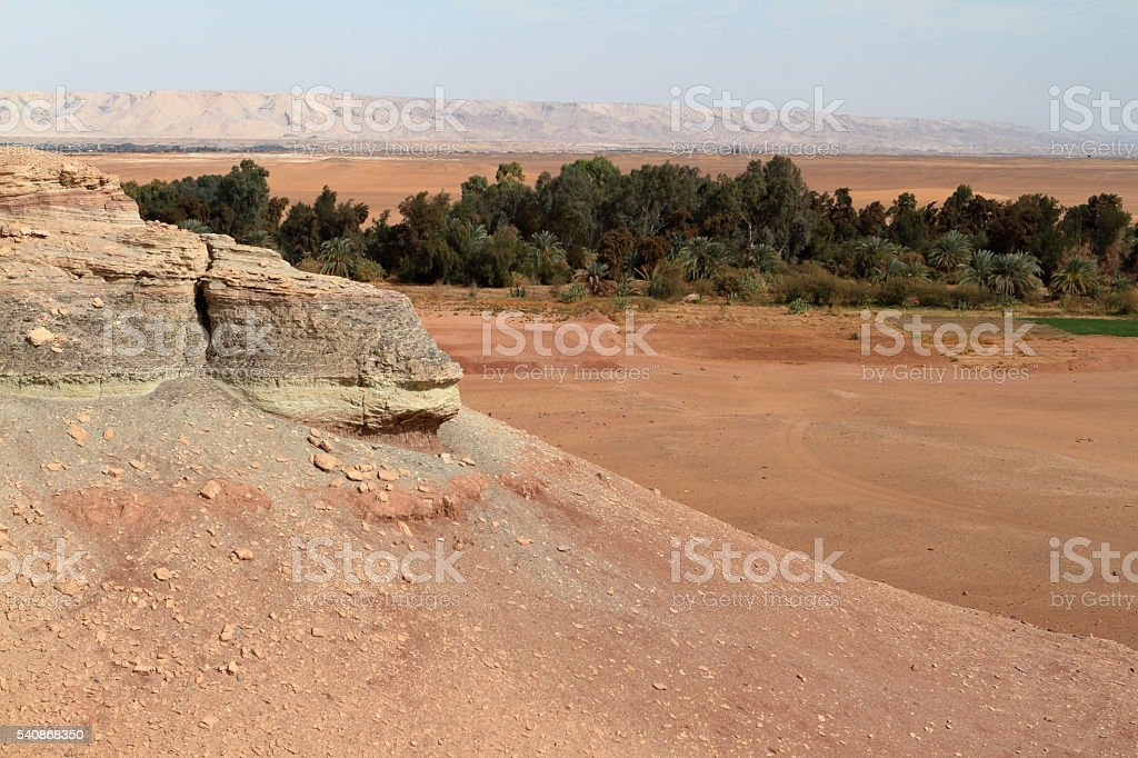 Oasis of El Qasr in the Sahara desert stock photo