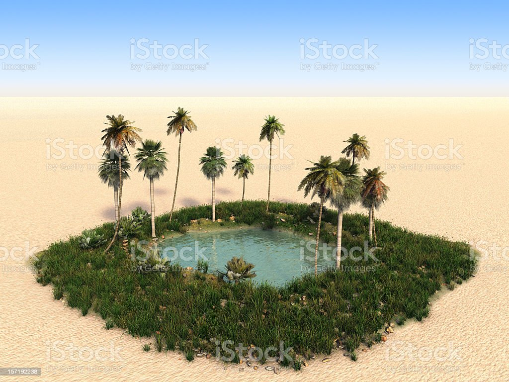 Oasis with palm trees in the middle of desert stock photo
