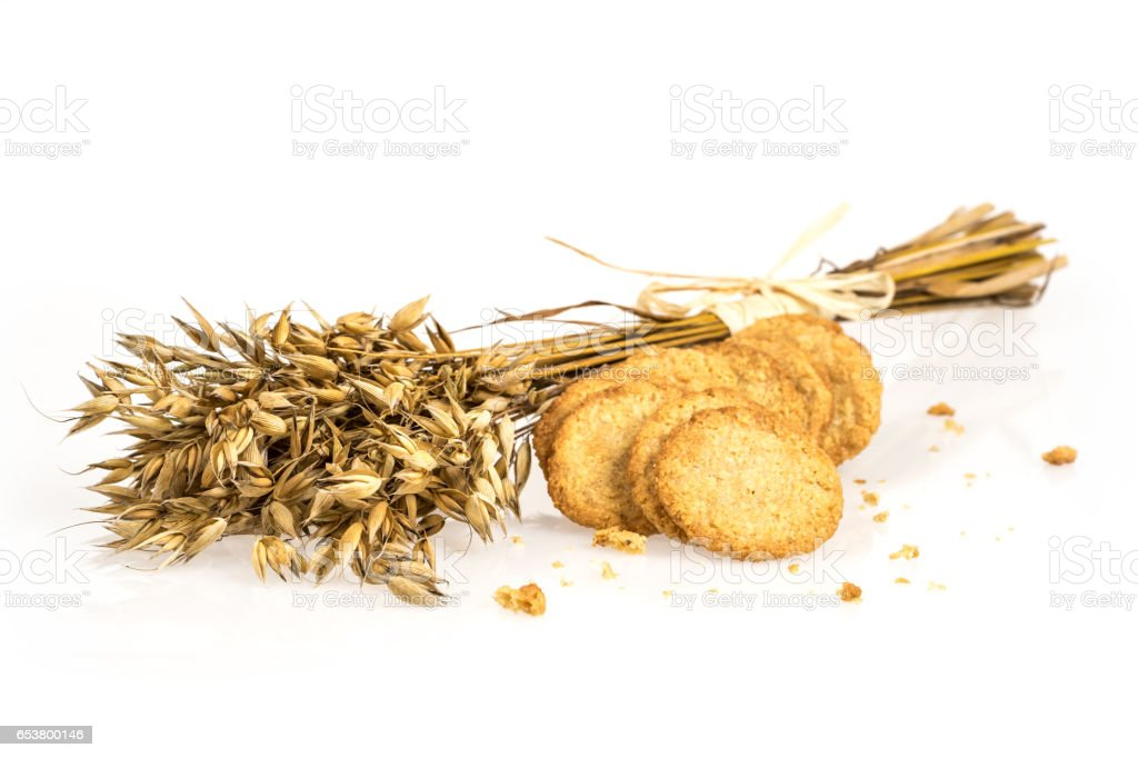 Oat bunch and cookies isolated on white background. Grain bouquet. Golden oats spikelets. Food, bakery concept stock photo