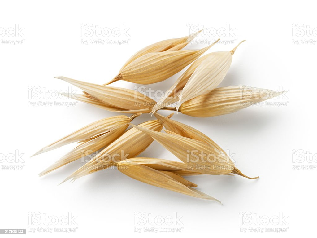 Oat grain isolated on white background. With clipping path. stock photo