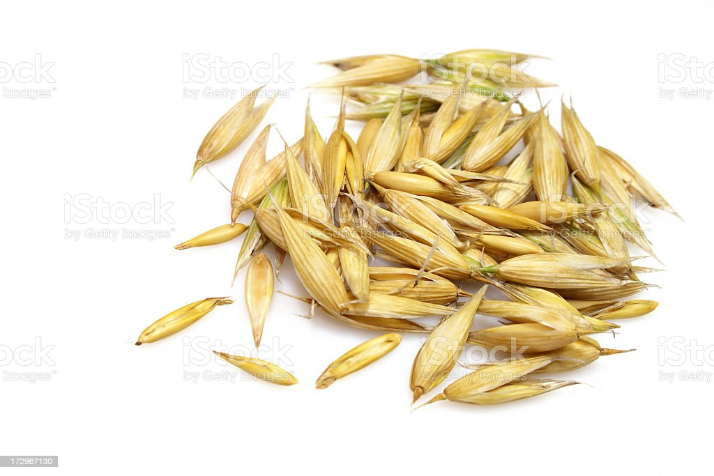 Oat grains on a white background stock photo