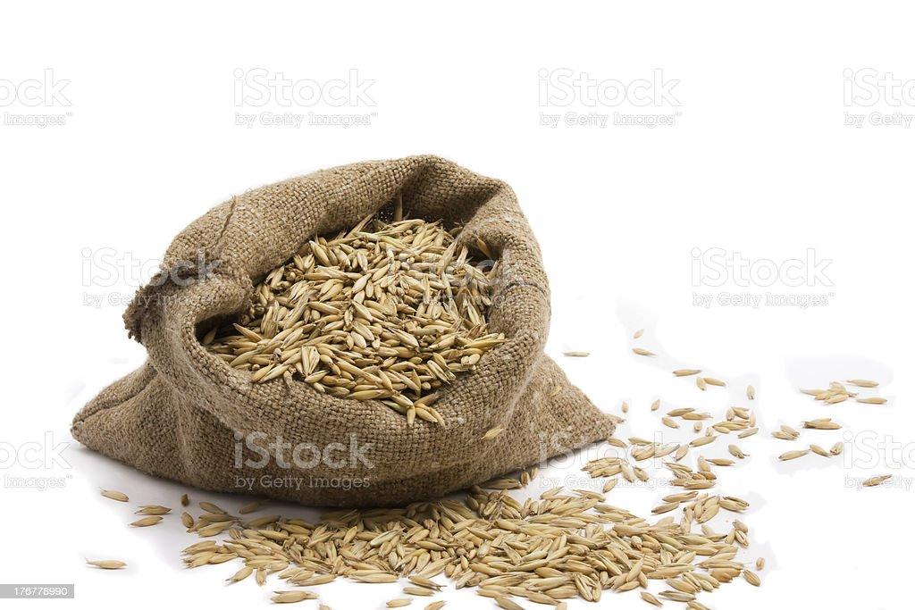 oat royalty-free stock photo