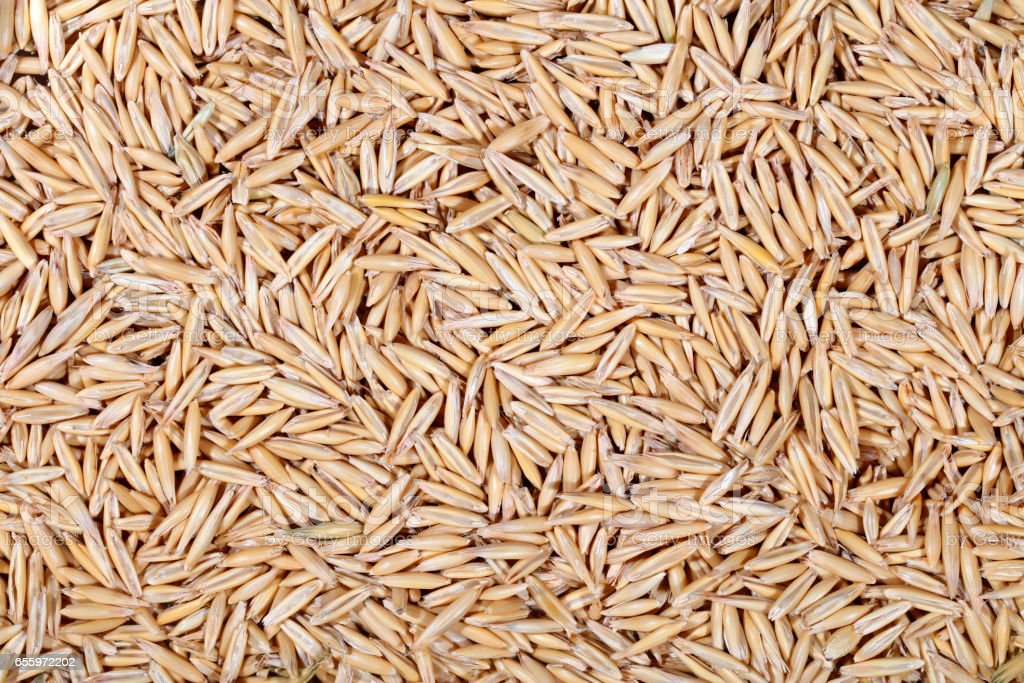 Oat seeds background - high resolution 50Mpx stock photo
