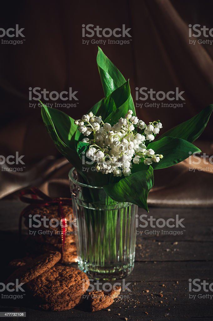 Oatmeal cookies and blooming flower stock photo