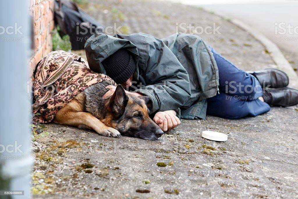 obdachloser Mann mit seinem Hund stock photo