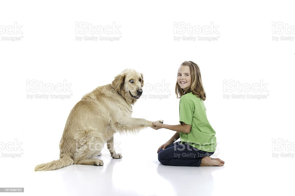 Obedience Training royalty-free stock photo