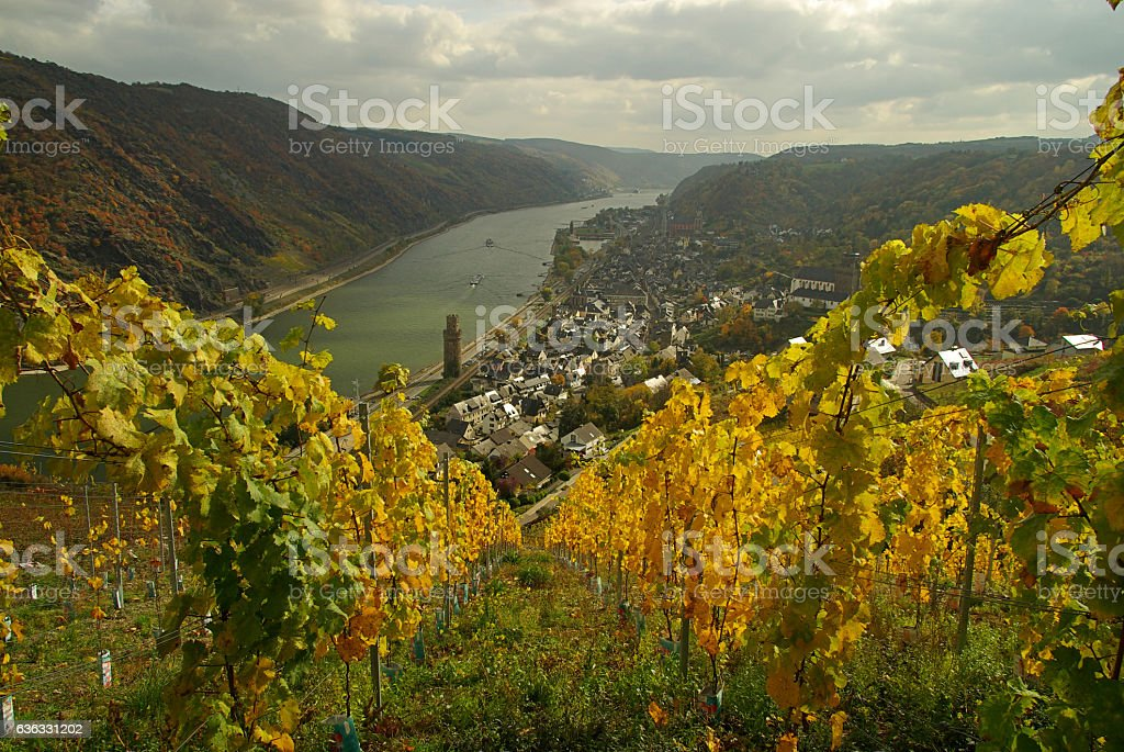 Oberwesel stock photo