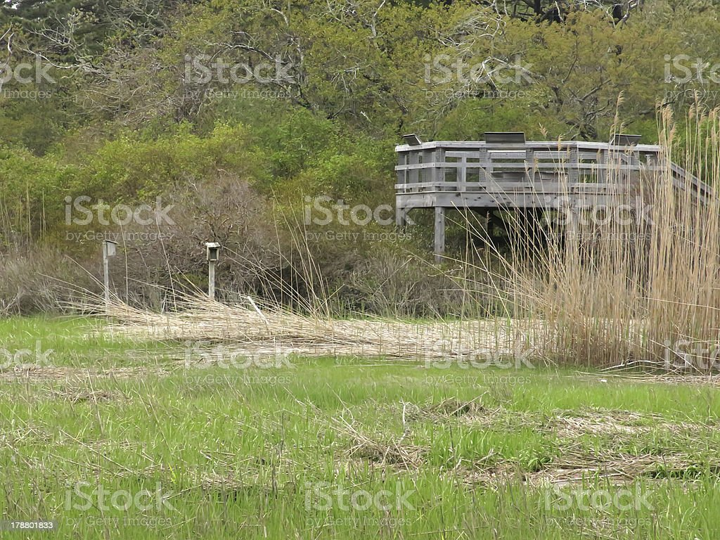 Observation deck over salt marsh royalty-free stock photo