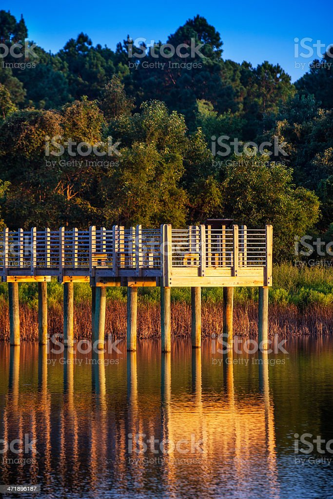 Observation Pier in Marshland Waters royalty-free stock photo