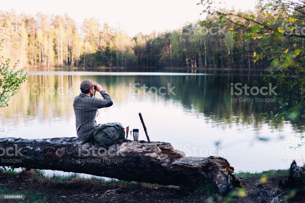 Observing Birds By The Lake stock photo